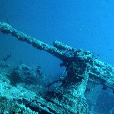 Mar Rosso, Crociera dei Relitti a Nord (pt. II)