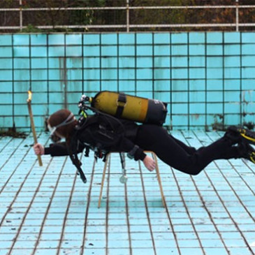 Padi Dive Day a Y-40