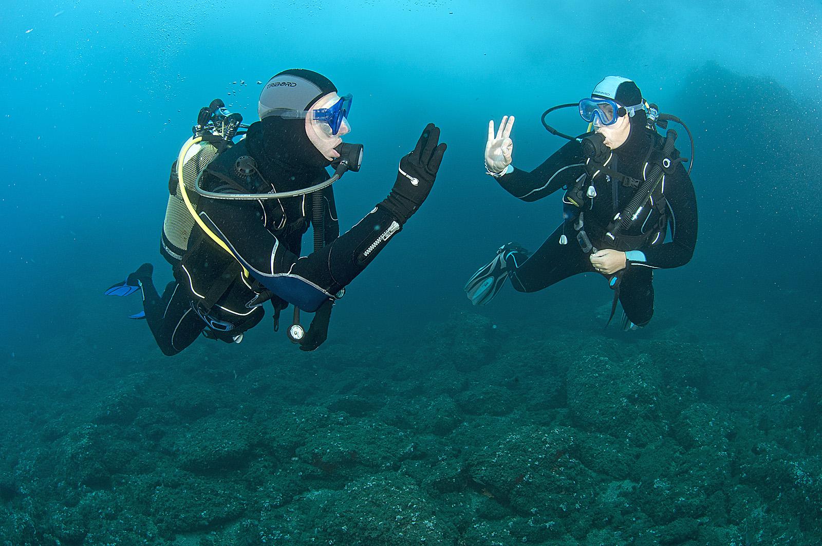 Solo diving da soli sott acqua scubazone - Dive per sempre ...