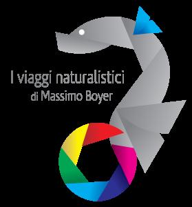 logo naturalistic