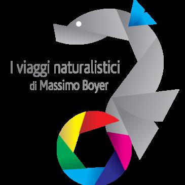 I viaggi naturalistici di Massimo Boyer