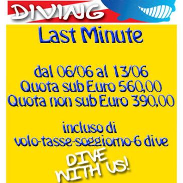 Last Minute Lampedusa – Settimana Blu dal 06/06 al 13/06