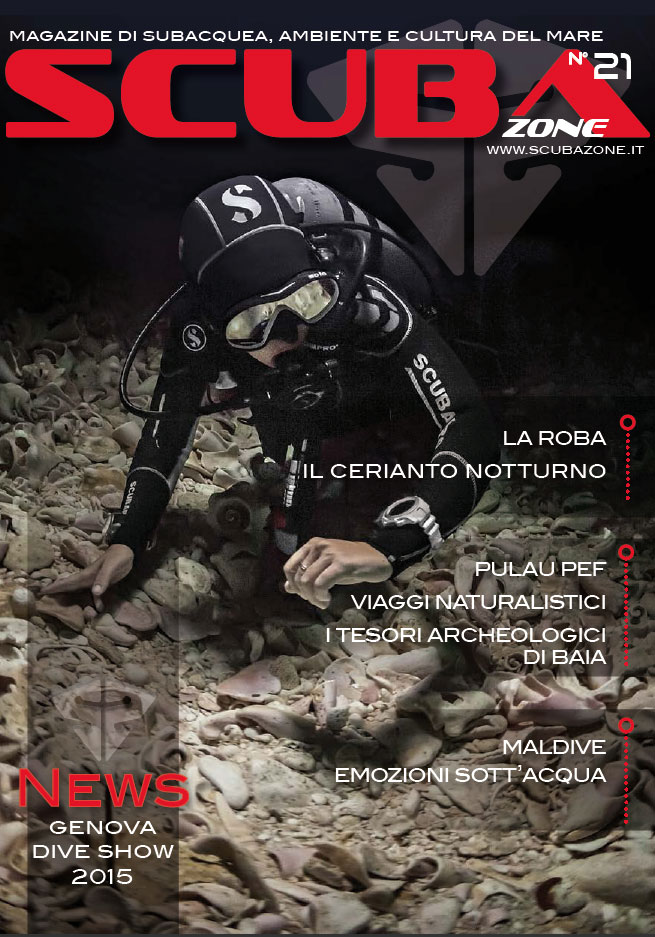 sz21-cover