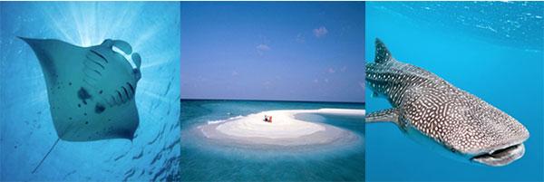 nosy-maldive-capodanno