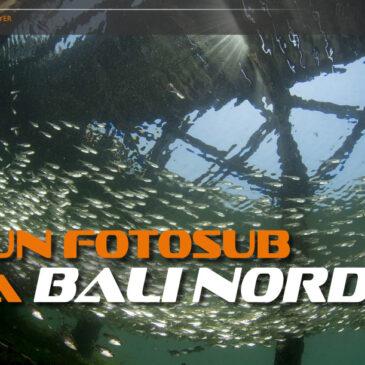 Bali su Scubazone 24
