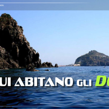 Ischia su Scubazone 24