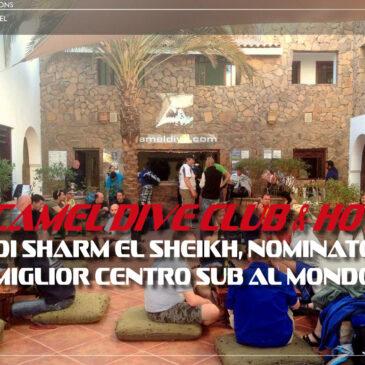 Il Camel Dive Club & Hotel di Sharm El Sheikh, miglior centro sub al mondo