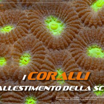 I coralli, l'allestimento della scena