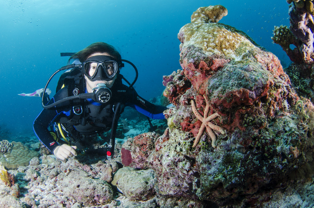 subacquea ricreativa