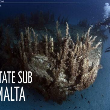 Estate sub a Malta