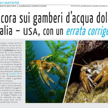 Ancora sui gamberi d'acqua dolce: Italia – USA, con un errata corrige.