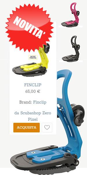 finclip