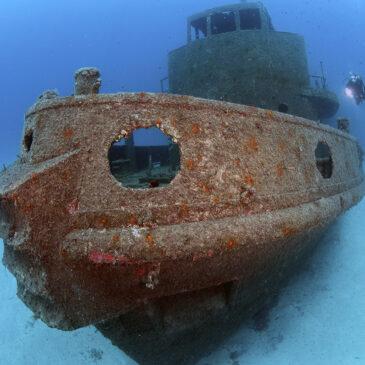 """Malta – Gozo – Comino – """"il tuo sogno mediterraneo"""" con Orangeshark diving centre."""