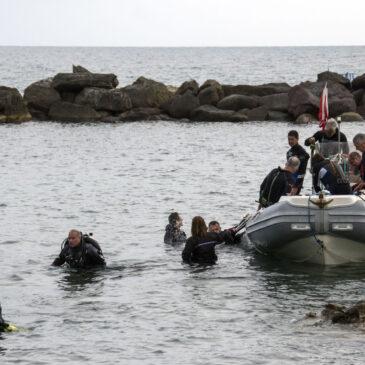 Il prezzo giusto delle immersioni?