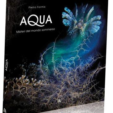 Aqua, misteri del mondo sommerso di Pietro Formis