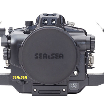 Le nuove custodie Sea&Sea per le mirrorless