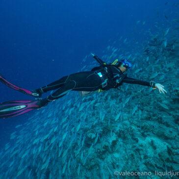 Immersioni in Mar Rosso: un toccasana per la mente e per il corpo