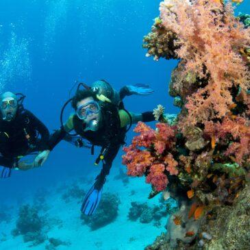 Forma fisica ed immersione subacquea