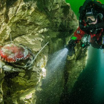 Pinne rosa del lago Maggiore – L'intervista (II parte)