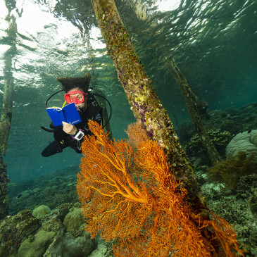 Taccuino subacqueo Atlaua. Prova sul campo