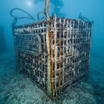 Come affinare il vino in fondo al mare della Liguria