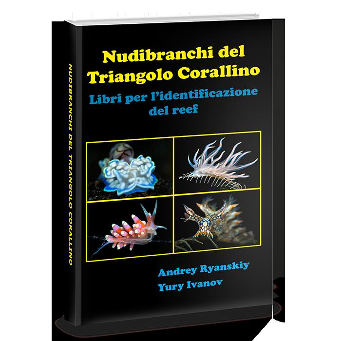 nudibranchi del triangolo corallino