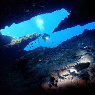 Malta. Il tuo sogno mediterraneo