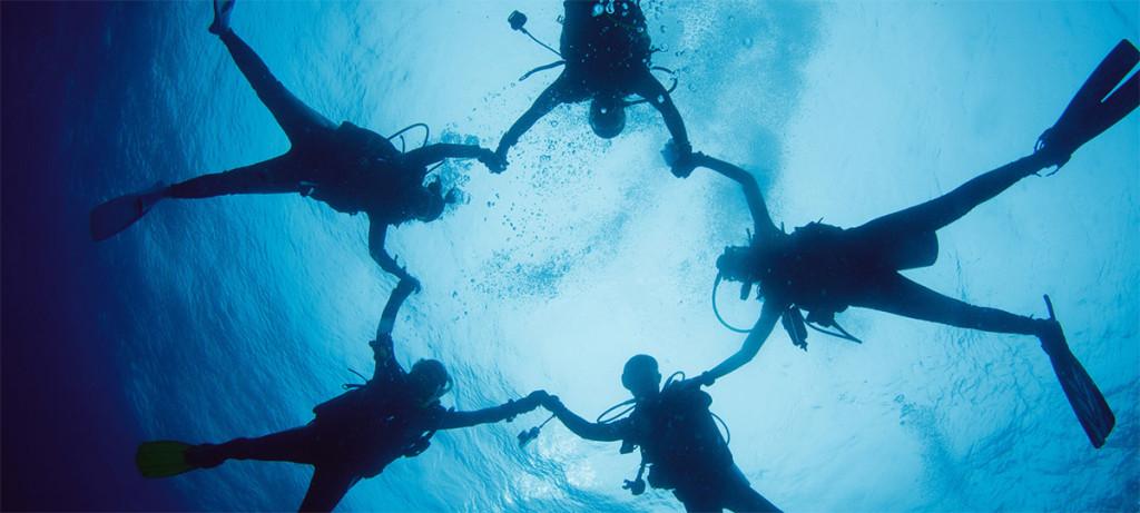 divinguides rid