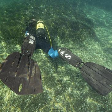 Pinne SCUBAPRO SEAWING NOVA: prova sul campo