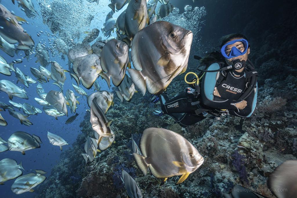 immersione più bella