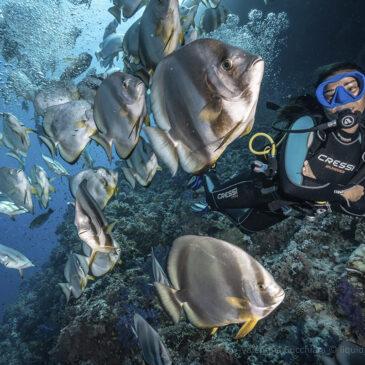 L'immersione più bella è la prossima