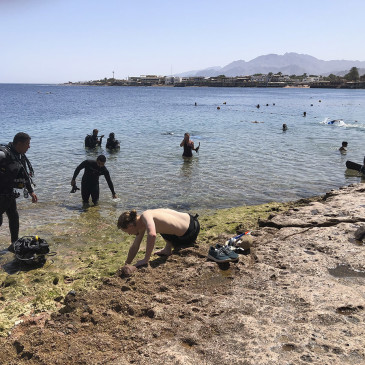 I pregiudizi sulle immersioni dalla riva