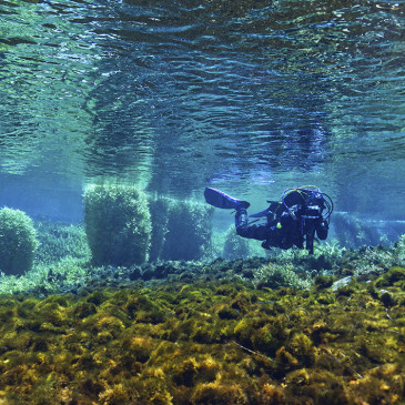 #Divelocal: la nuova dimensione della subacquea locale