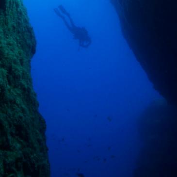 Quali sono le migliori immersioni al mondo? Parte III
